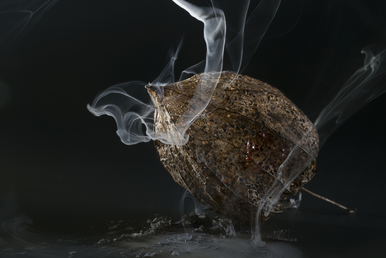 smoking Physalis