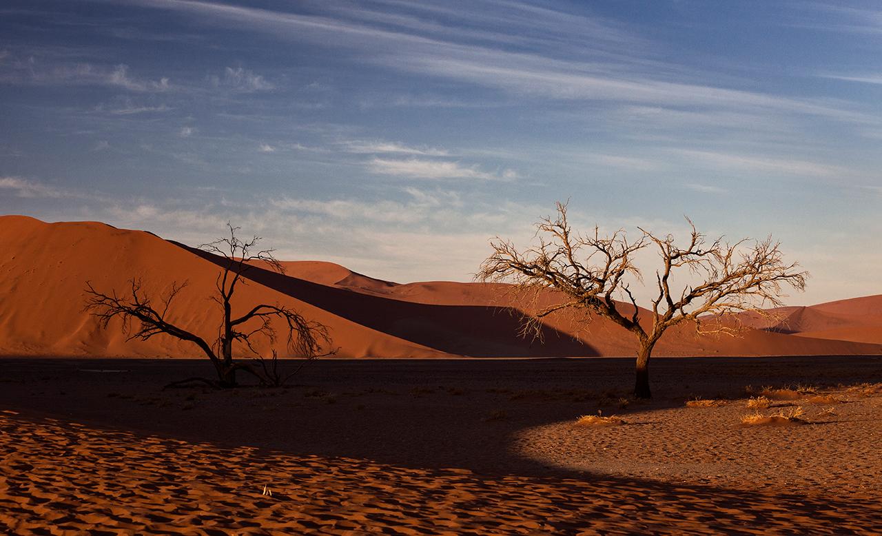 Namib-Wüste am frühen Morgen